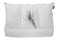 sithon-IV-pillow-200