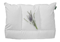 sithon-IV-pillow-200