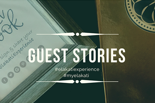 Guest Stories